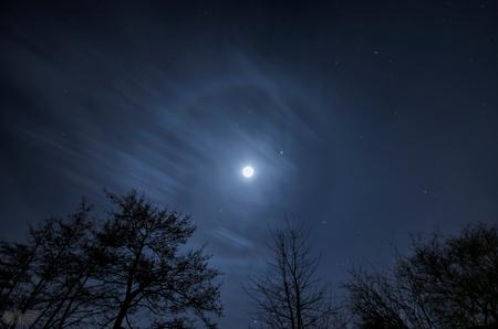 Maan Halo - Prachtige maan met een Halo  Camera Nikon D7000 Lens Sigma 10mm F4.5 Exposure 20 sec  Aperture f/4.5 Focal Length 10 mm ISO Speed 100 - foto door wido-foto op 12-02-2014 - deze foto bevat: lucht, wolken, tuin, avond, maan, nacht, nachtfotografie, moon, sterren, halo, helder, lange sluitertijd