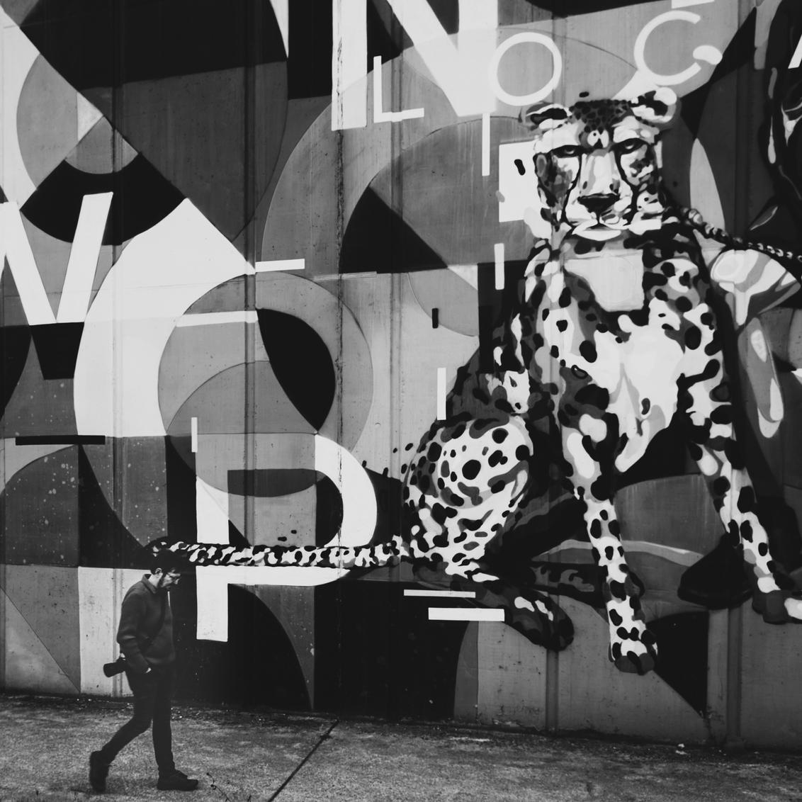 No leopard here - Niet iedereen houdt van street art :-) - foto door Manufleur op 25-03-2021