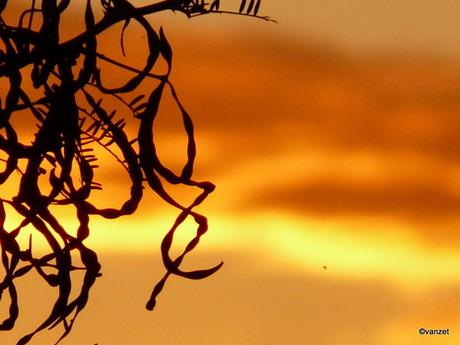 Zonsondergang in Afrika is anders