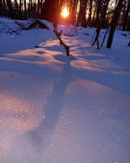 Afscheid van de winter 2 - - - foto door MANL op 25-03-2021