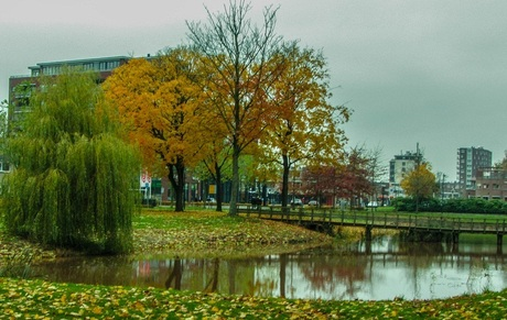 Stadskanaal in de herfst tinten verkleind voor zoom.jpg