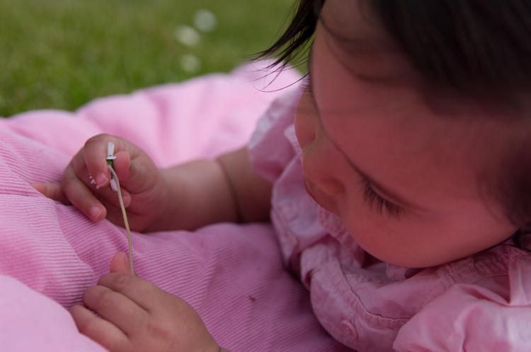 Roze&bloem - Een fijne middag buiten - foto door Alexander5592 op 27-05-2010 - deze foto bevat: roze, bloem, kind, buiten