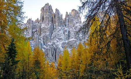 dolomieten 2 - Latemar.... Deze toppen aan de noordzijde blijven de hele dag in de schaduw en zien er daarom nog grilliger en mysterieuzer uit.... - foto door bernhard48 op 22-02-2018 - deze foto bevat: natuur, herfst, sneeuw, landschap, bomen, bergen