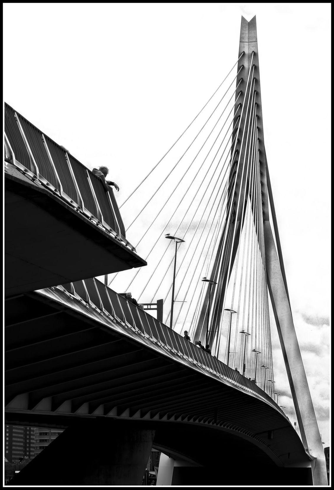Erasmusbrug Rotterdam - - - foto door jelle13 op 20-02-2021 - deze foto bevat: licht, bewerkt, silhouet, bewerking, zwartwit, contrast, creatief
