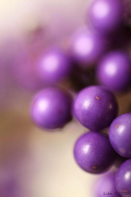 paarse ballen
