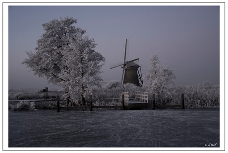 Winter in Kinderdijk II