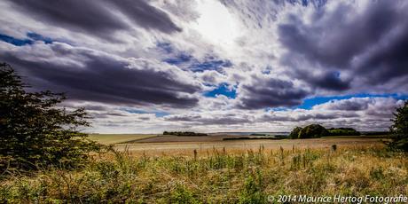 Salisbury Plains
