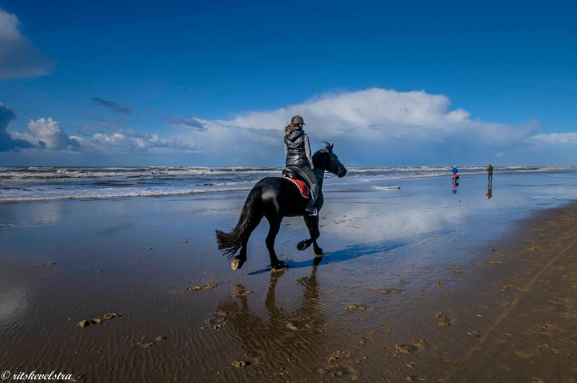 even uitwaaien op het strand - met mooi weer en even over het strand rijden heerlijk. - foto door rits op 09-03-2021 - deze foto bevat: wolken, strand, zee, paard, Egmond aan Zee