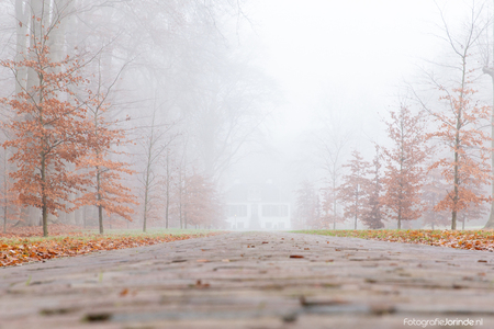 Misty Morning - - - foto door jschaapman op 05-12-2019 - deze foto bevat: mist