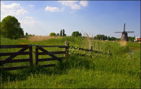 Oudorper polder
