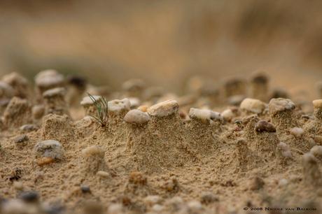Sand & Stones II