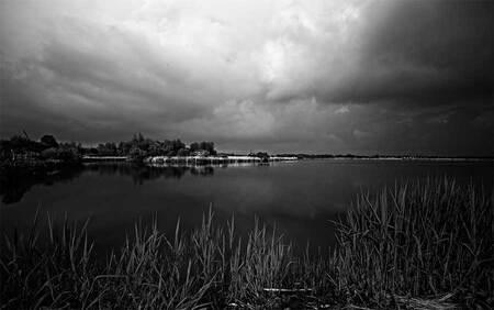 Licht in Het Twiske - Eergisteren was het licht zo mooi !! - foto door n.marin op 31-05-2013 - deze foto bevat: licht, landschap, zwart wit