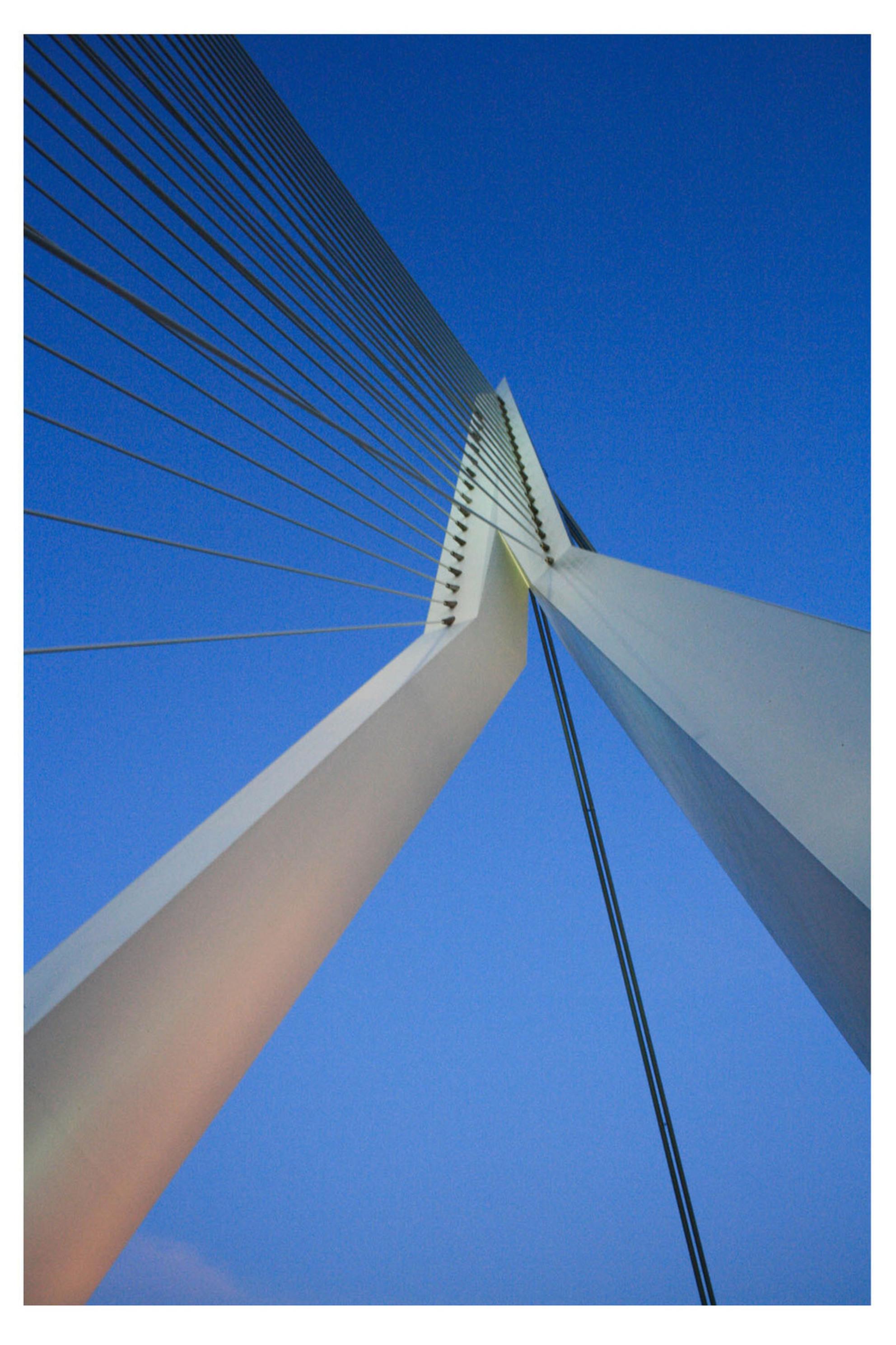 Rotterdamse lijnen - Erasmusbrug - foto door anneliefsje op 25-03-2011 - deze foto bevat: rotterdam, erasmusbrug