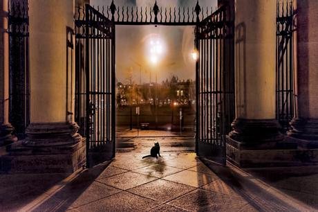 de Dom in Berlijn op een regenachtige avond