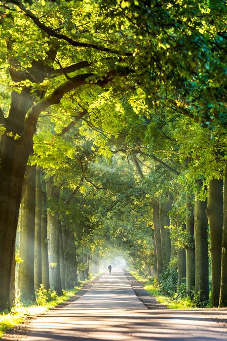 Landgoed Heerlijkheid Mariënwaerdt.