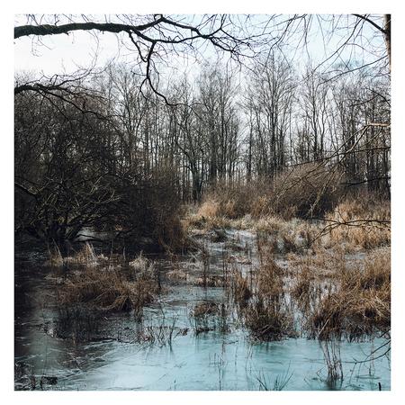 Bevroren - Na de eerste goede vrieskou van dit jaar, toen er nog geen sneeuw lag.     ©MotionMan 2021 - foto door motionman op 11-02-2021 - deze foto bevat: gras, boom, water, natuur, winter, ijs, bos, natuurgebied, open, bomen, koud, sfeer, bevroren, rust, zonnig, sfeervol, vrieskou, rustig, vriezen, plek, skar, katlijk, ijsgroei, katliker, ijskous