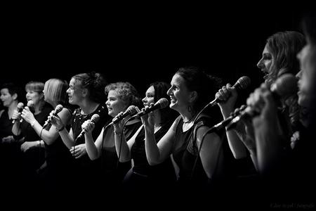 the people united - heerlijk swingend door het weekend heen.  zaterdag middag 15 november op de sinterklaas liederen tijdens de jaarlijkse intocht in Ermelo en 's avond - foto door close.to.yoU.fotografie op 21-11-2014 - deze foto bevat: close to you fotografie
