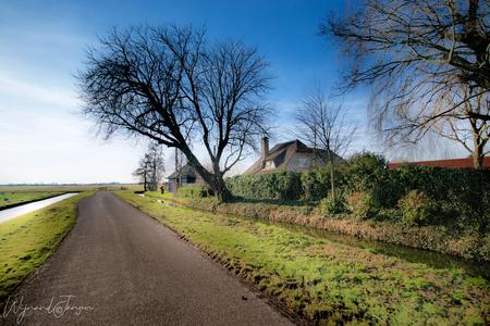 Farmers landscape - Deze foto is al fietsend op de e-bike gemaakt met 12 km per uur. Gewoon om dat het kan, en omdat ik het leuk vind om te doen. - foto door artmen op 03-03-2021