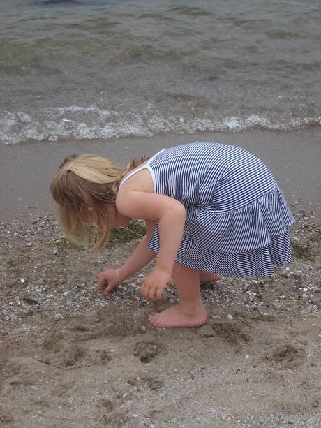 schelpjes zoeken