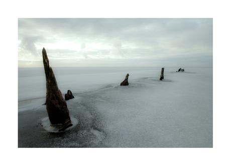 Artic World