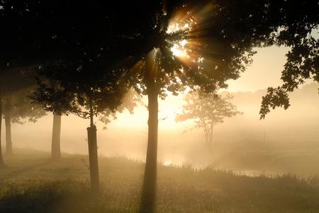 herfst morgen - zonsopgang in de herfst - foto door MarcoBos op 17-10-2010 - deze foto bevat: herfst, zonsopgang, dauw