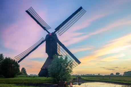 Nederlands ochtendrood