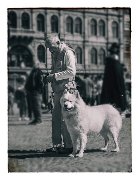 """""""Dog and his Human"""""""