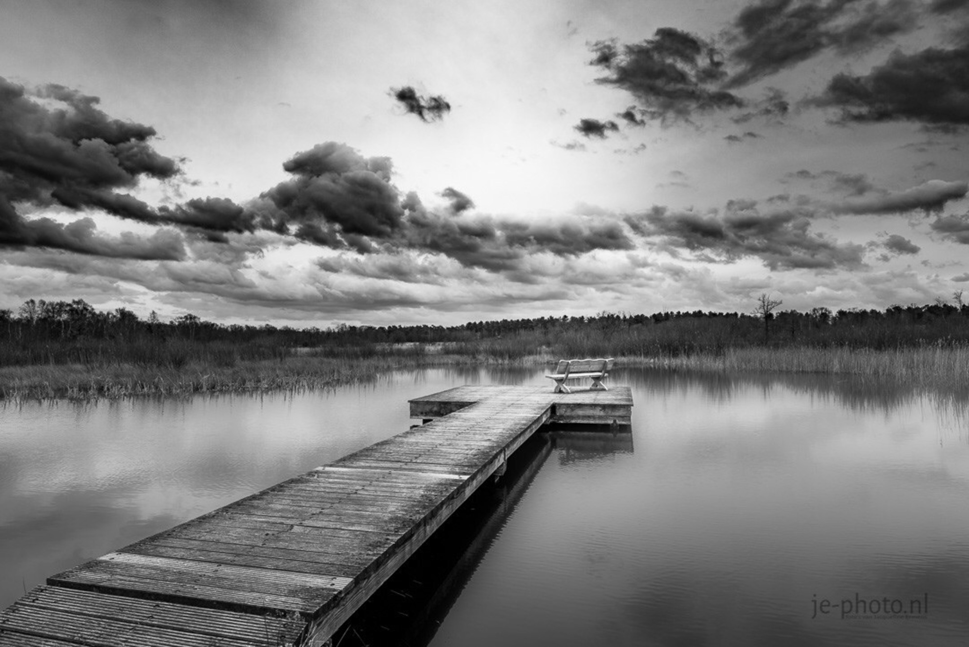 Bènkske - - - foto door je-photo op 09-03-2019 - deze foto bevat: natuur, zwart wit