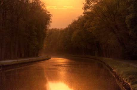 Evening Shine