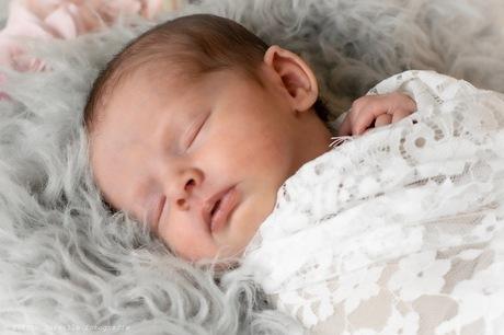 Newborn tweeling shoot