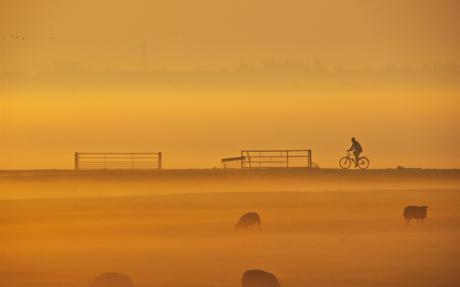 fietsen in de mist 3