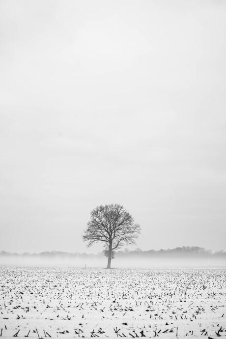 minimalistische landschap