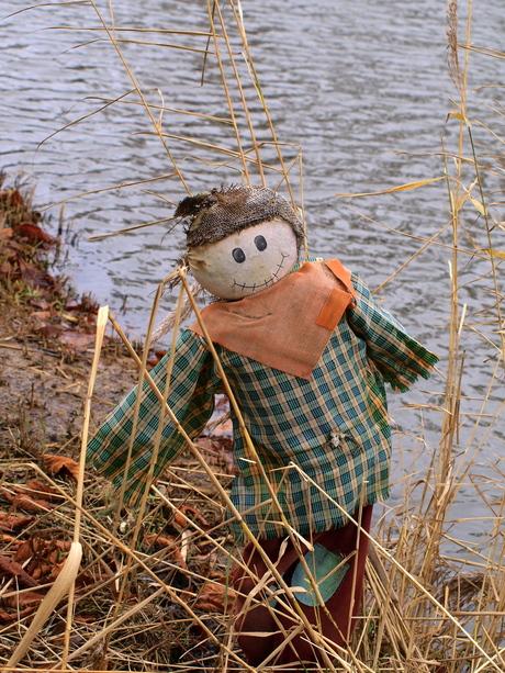 scarecrow schanulleke