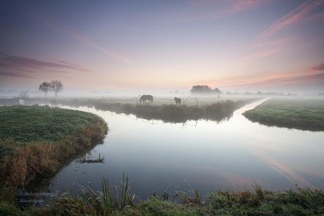 Herfst in de polder