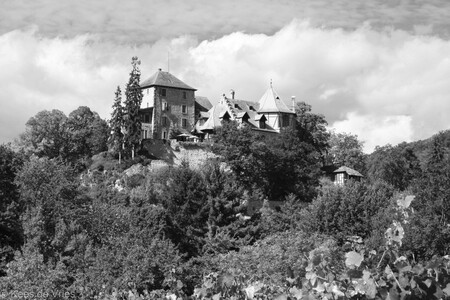 Bovenaan - Herenhuis op top van een heuvel in de Elzas - foto door KdV59 op 05-05-2021 - locatie: Elzas, Frankrijk - deze foto bevat: wolk, fabriek, lucht, gebouw, natuurlijk landschap, zwart en wit, vegetatie, atmosferisch fenomeen, huis, boom