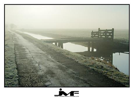 Misty morning (2)