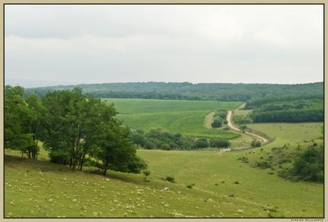 Landschap bij Dunaszentmiklos