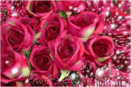 pink ribbon 4 - vandaag is het de laatste oktober dag en dus de laatse dag van de maand waarin we extra aandacht vragen voor de mensen die met borstkanker te maken h - foto door WildIsh op 31-10-2008 - deze foto bevat: pink, bewerkt, ribbon, wildish, -, pink-ribbon