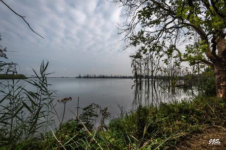 Zicht op Kleine Noordwaard Biesbosch