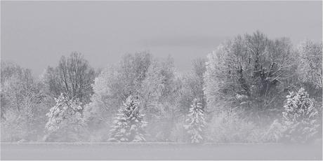 winter in Heerhugowaard