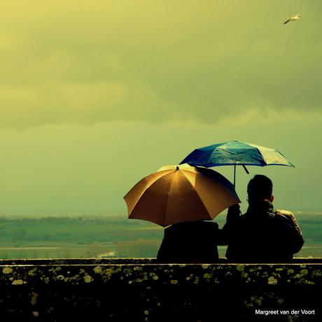 Plu en pleut