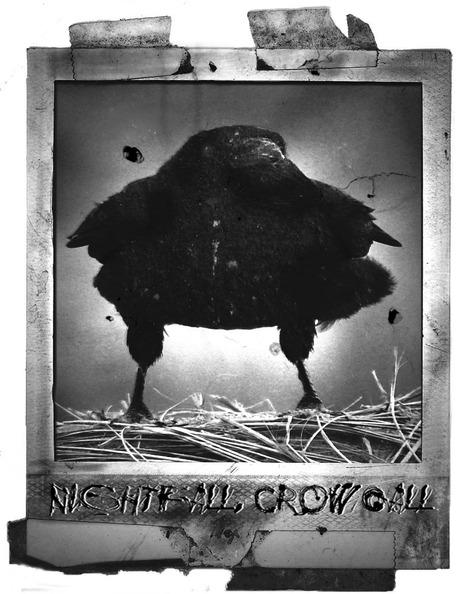Nightfall, Crowcall