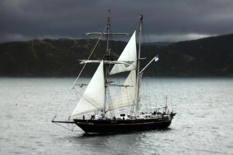 Droom in Nieuw Zeeland