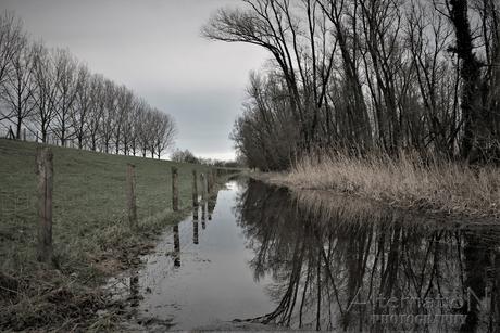 Walk on the Flood