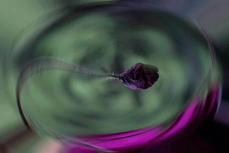 Moving flower
