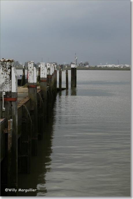 Haven vanuit Doel gezien