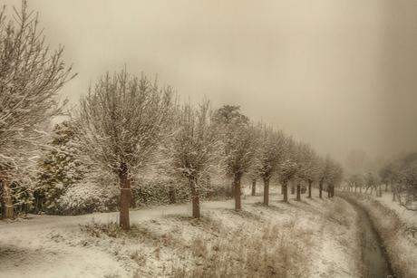 sneeuw in veere