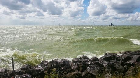 Het groene IJsselmeer bij Stavoren