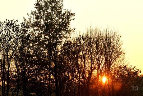 zonsondergang DSC_2917