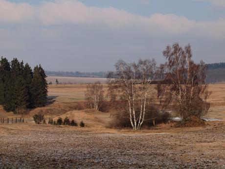 Landschap in de Harz